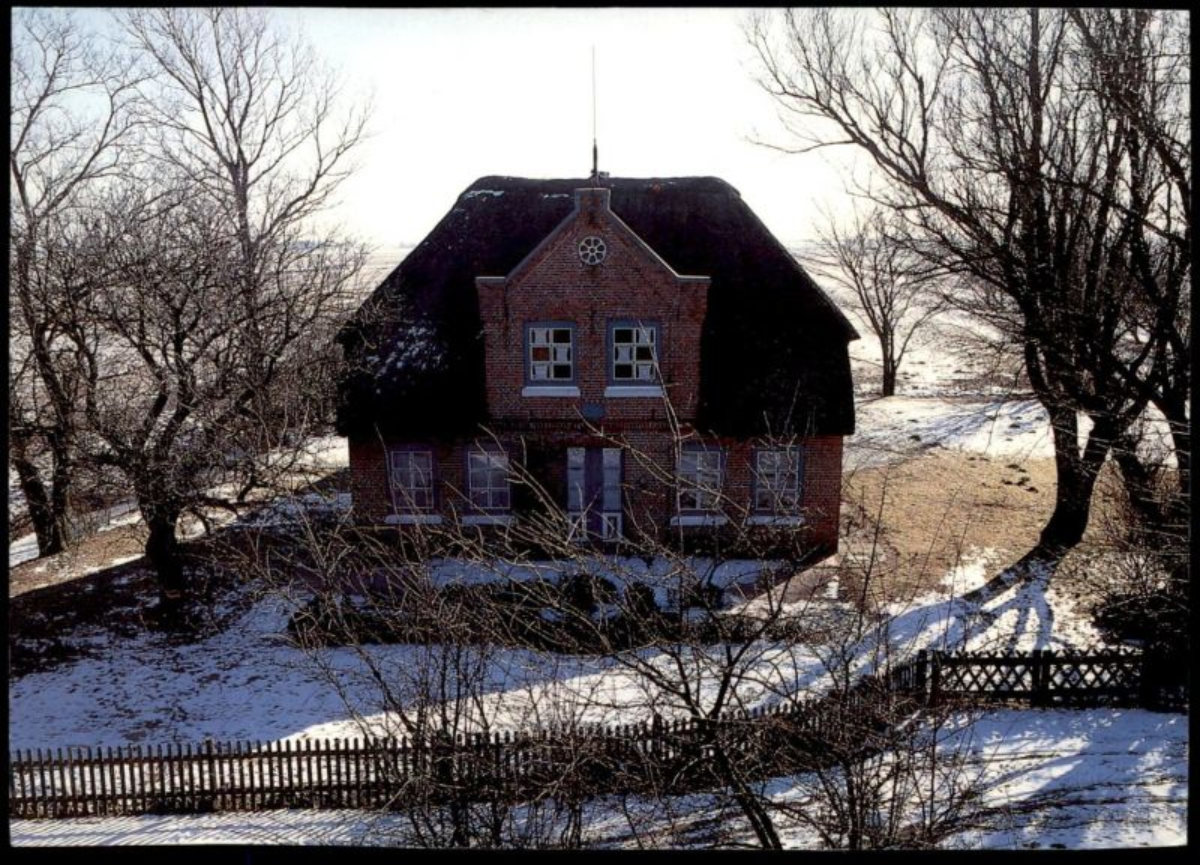 ÄLTERE POSTKARTE WINTER HINTERM DEICH HUSUM SIMONSBERG Friesenhaus Haus Ansichtskarte postcard cpa AK