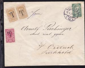 Allegorie 20 H. auf Brief ab Villach 12.I.20 nach Villach,