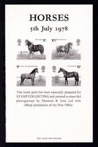 100 Jahre Shire Horse Society Schwarzdruck