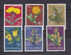 Jugoslawische Flora (VI) **
