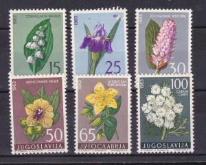 Jugoslawische Flora (V) **