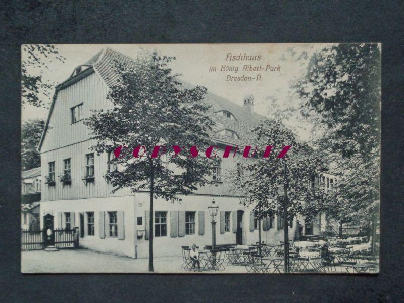 DRESDEN Neustadt - FISCHHAUS im König Albert-Park - 1909 Nr. B-16968 ...