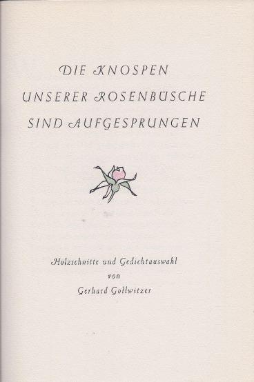 Gollwitzer, Gerhard. Die Knospen unserer Rosenbüsche sind aufgesprungen.