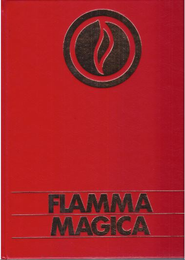 Spring, Anselm (Fotos u. Konzeption), Friedrich Abel und Giuseppe Brunamontini (Texte). Flamma magica : [Feuer, Wärme, Licht, Frieden].