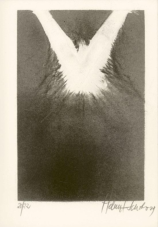 Schober, Helmut. Schwarze Sonne : [anlässlich der Ausstellung 'Helmut Schober - Schwarze Sonne' in der Josef-Haubrich-Kunsthalle, Köln (10.8. bis 1.10.1989)].