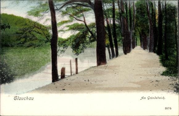 Ak Glauchau an der Zwickauer Mulde in Sachsen, Partie am Gründelteich, Bäume