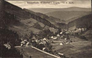 Ak Wildenthal Eibenstock im Erzgebirge, Sommerfrische, Blick ins Tal, Wälder, Berge Häuser