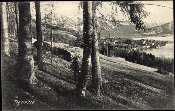 Ak Tegernsee, Totalansicht des Ortes, Blick vom Wald