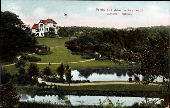 Ak Aumühle im Herzogtum Lauenburg, Partie im Sachsenwald, Hofriede