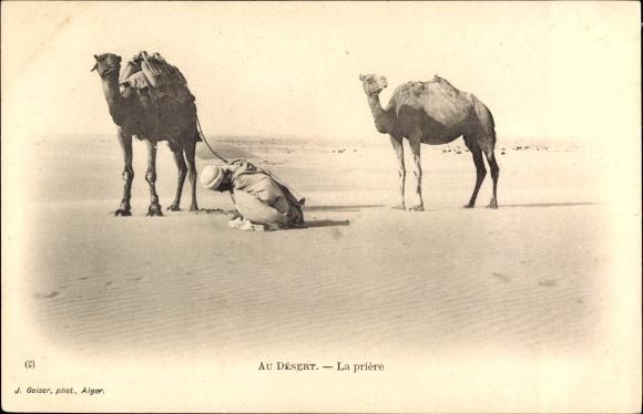 Ak Au Desert, la priere, Mann in der Wüste beim Gebet, Kamele
