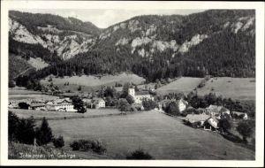 Ak Schwarzau im Gebirge Niederösterreich, Blick auf den Ort, Berge