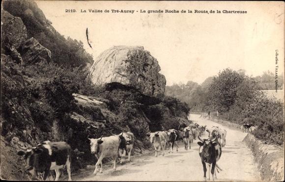Ak La Vallée de Tré Auray, La grande Roche de la Route, de la Chartreuse, Kühe