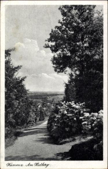 Ak Kamenz im Kreis Bautzen, der Hutberg im Blütenschmuck