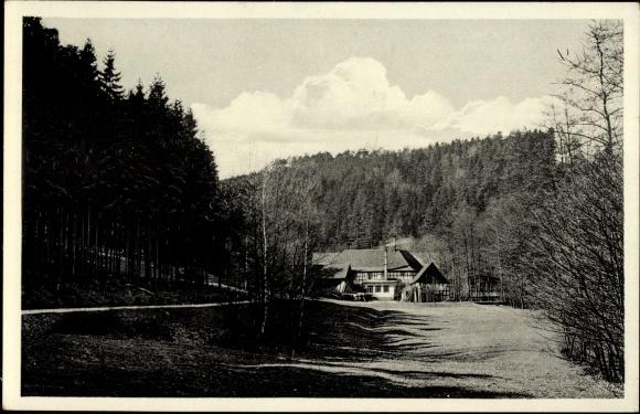Ak Eisenberg im Saale Holzland Kreis, Waldhaus Froschmühle, Mühltal, A. Haufe
