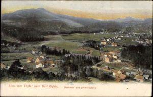Ak Oybin in Sachsen, Blick vom Töpfer, Hochwald und Johannissteine