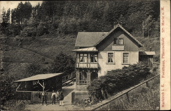 Ak Sainte Marie aux Mines Markirch Haut Rhin, Forsthaus, Pflanzschule