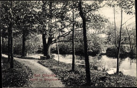 Ak Bad Oldesloe in Schleswig Holstein, Partie im Bürgerpark, Am Wasser