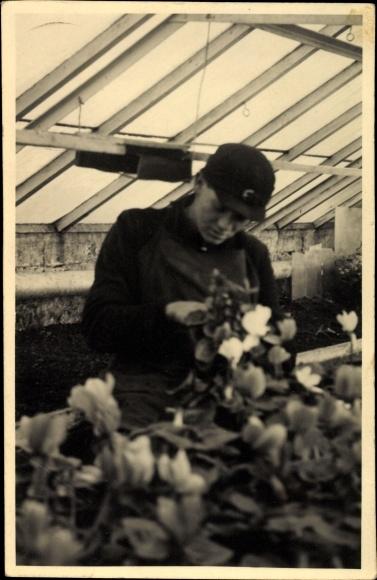 Foto Ak Nordenham im Oldenburger Land, Gewächshaus, Gärtner bei der Arbeit