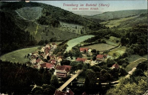 Ak Treseburg Thale im Harz, Blick in das Bodetal vom weißen Hirsch, Ortschaft