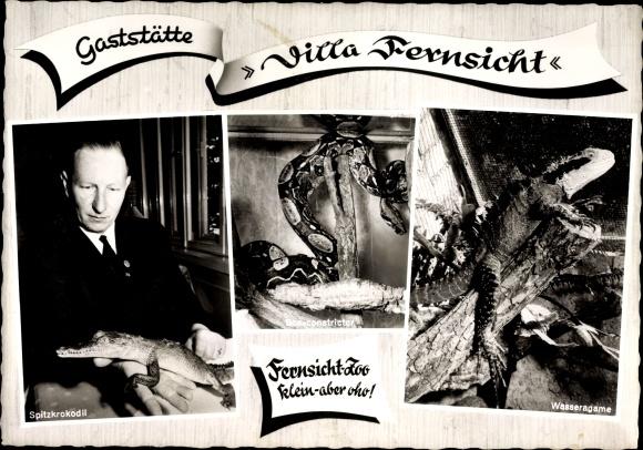 Ak Raisdorf Schwentinental Schleswig Holstein, Gaststätte Villa Fernsicht, Zoo, Inh. D. Schliemann
