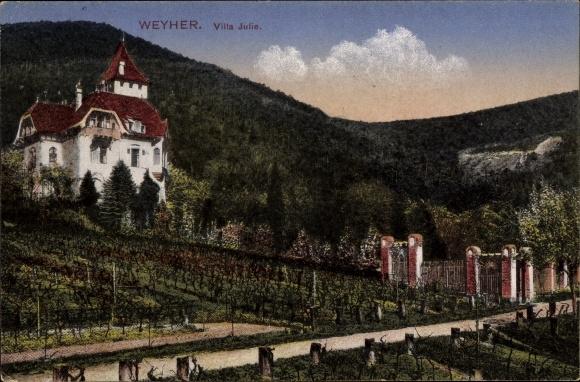 Ak Weyher in der Pfalz, Villa Julie, Weinanbaufelder