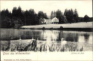 Ak Wilhelmsthal Marksuhl im Wartburgkreis, Schloss mit Park, Teich mit Schwänen