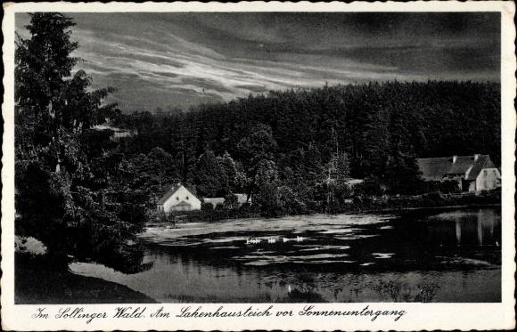 Ak Dassel in Niedersachsen, Im Sollinger Wald, Lakenhausteich vor Sonnenuntergang