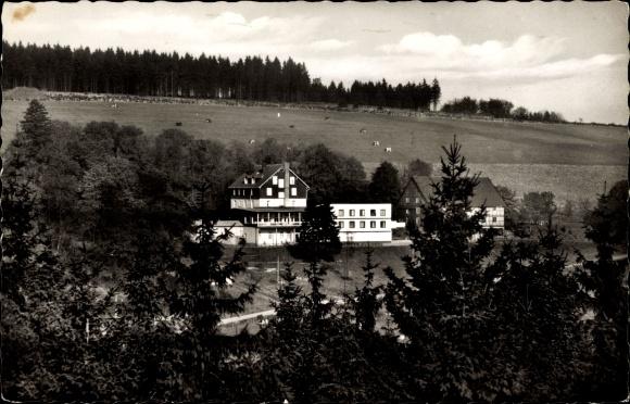 Ak Hoheleye Winterberg im Sauerland, Berghotel Auf der Hoheleye, Weide und Wald