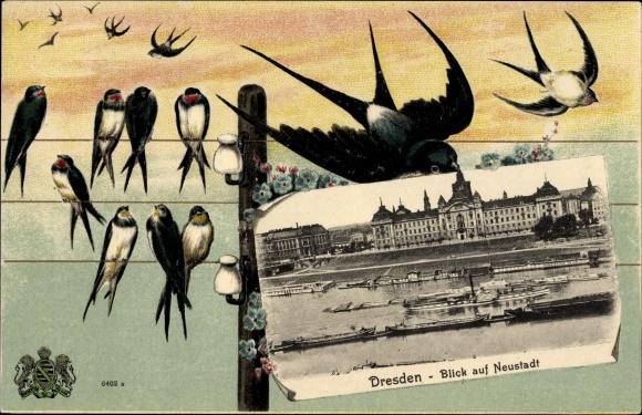 Präge Passepartout Ak Dresden Neustadt, Blick auf die Stadt, Elbschiffsverkehr, Schwalben