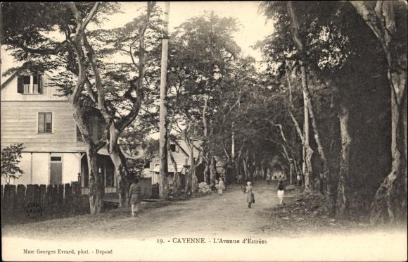 Ak Cayenne Französisch Guayana, L'Avenue d'estrées, Straßenpartie