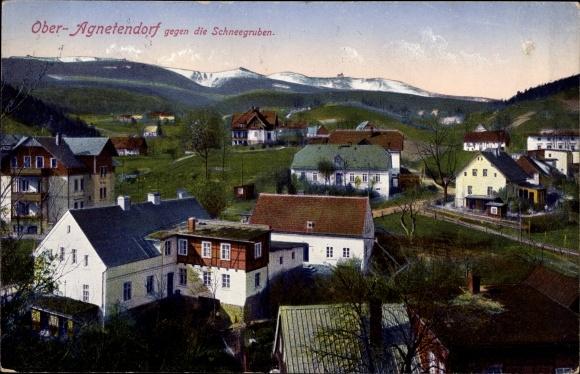 Ak Jagniątków Agnetendorf Hirschberg Riesengebirge Schlesien, Blick gegen die Schneegruben