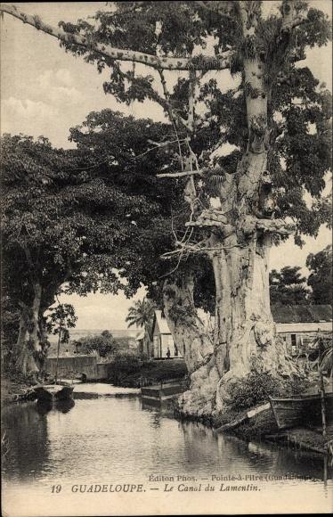 Ak Pointe à Pitre Guadeloupe, Le Canal du Lamentin, Kanal, Baum, Boote