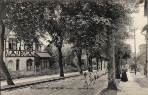 Ak Benneckenstein Oberharz am Brocken, Partie in der Bahnhofstraße, Wohnhäuser