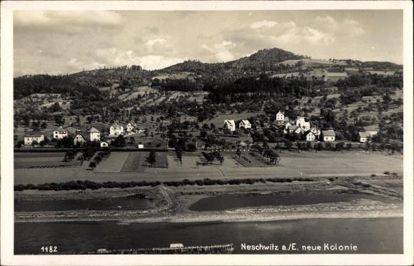 Ak Neschwitz Děčín Tetschen Bodenbach Elbe Reg. Aussig, Blick auf die Kolonie, Elbe