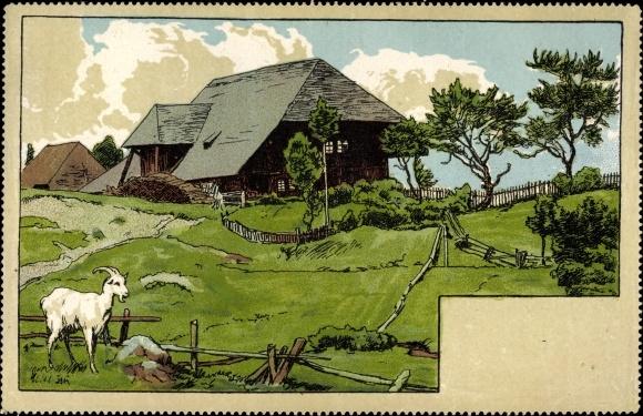 Künstler Ak Thoma, Hans, Ziege vor einem Bauernhaus
