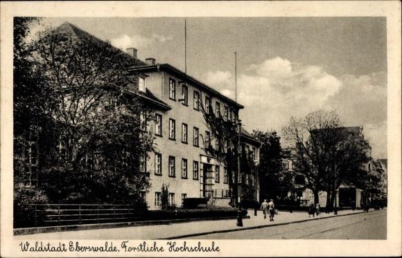 Ak Waldstadt Eberswalde Brandenburg, Forstliche Hochschule