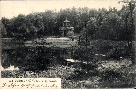 Ak Bad Oldesloe in Schleswig Holstein, Partie am Salzteich im Kurpark