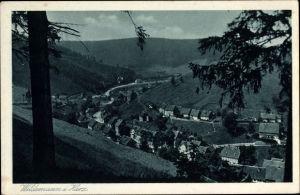 Ak Wildemann Clausthal Zellerfeld im Oberharz, Talansicht, Panorama