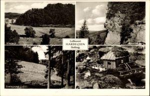 Ak Hardegsen in Niedersachsen, Niedeck, Eselsgrund, Karlsquelle, Hünsche Burg