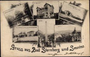 Ak Český Šternberk Böhm. Sternberg Mittelböhmen, Teich, Villa Bellevue,Villa Hauschild,Villa Nebesky