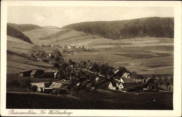 Ak Rybnica Leśna Reimswaldau Schlesien, Ortschaft mit Landschaftsblick