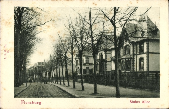 Ak Flensburg in Schleswig Holstein, Stuhrs Allee, Straßenansicht, Wohnhäuser