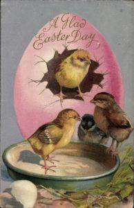 Präge Litho Glückwunsch Ostern, Küken am Fresnapf, buntes Osterei