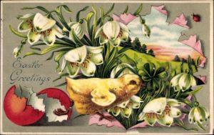 Präge Litho Glückwunsch Ostern, Küken auf einer Blumenwiese, Eierschale, Märzenbecher, Marienkäfer