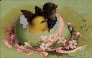 Präge Litho Glückwunsch Ostern, Schwarzes und gelbes Küken schlüpfen aus einem Ei