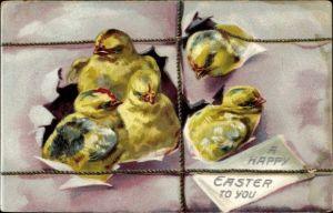 Präge Litho Glückwunsch Ostern, Fünf Küken kommen aus einem Paket, Tuck 700