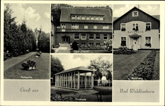 Ak Bad Waldliesborn Lippstadt im Kreis Soest Nordrhein Westfalen, Parkpartie, Badehaus, Trinkhalle