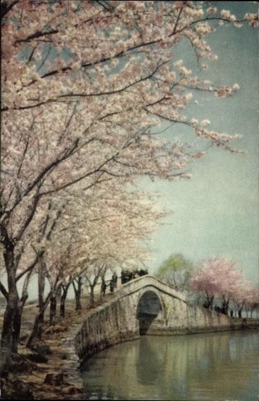 Ak Jiangsu China, Hengyun Park am Ufer des Sees Taihou, Brücke, Baumblüte
