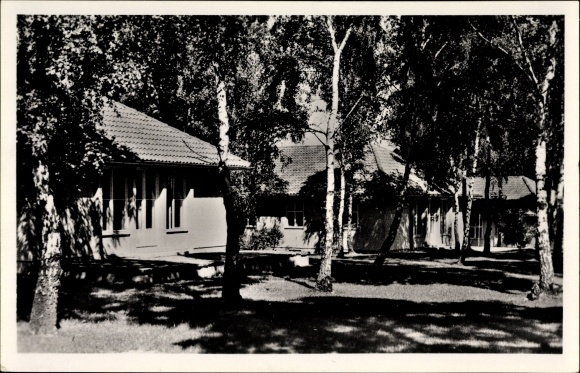 Ak Elstal Wustermark, Olympisches Dorf, Wohnhäuser im Birkenwald