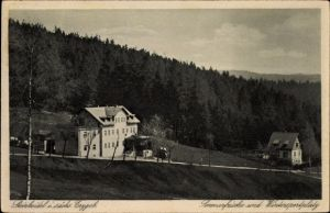 Ak Steinheidel Breitenbrunn im Erzgebirge, Sommerfrische und Wintersportplatz